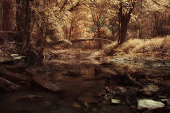 seuss creek (greg westfall.) Tags: bravo texas seuss infrared lifepixel comanchecounty gregwestfall theenchantedcarousel 590nm gregwestfallphotography