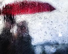 rainy day in April (marianna armata) Tags: red love water rain collage umbrella leaf heart sunday victor story rings racha sliders hss mariannaarmata