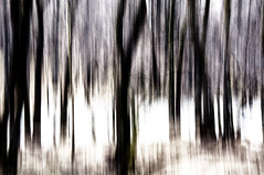 Nature (Abstract) 29 (Emmett Hunt) Tags: abstract landscape lakedistrict explore 18105mm nikond300s