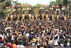 MG_3516 (PRATHAPSTOCKIMAGE) Tags: india elephant festival canon religion decoration kerala trissur pooram nettipattom eos60d