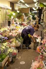 Nishiki Market, Kyoto (veronicajwilliams photography) Tags: veronicajwilliamsphotography veronicajwilliams kyoto kyotoculture japan japanese japaneseculture japanmarket travelphotography travel travelling traveling canon5dmarkii canon2470mmf28l canon2470mm canon2470 flowers shop retail woman