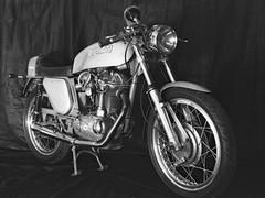 1972 Ducati 450 Desmo (robinguymer) Tags: ducati450desmo ducati silvershotgun desmo450 film bw monochrome caffenol nikonfe2