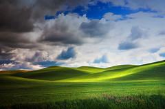 Palouse County (klauslang99) Tags: klauslang nature naturalworld northamerica panoramic palouse hills green rolling clouds