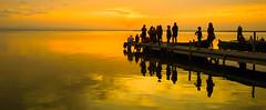 La barca del atardecer (Jesus_l) Tags: europa espaa valencia laalbufera mar jessl