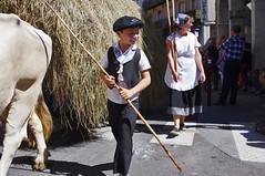 Autrefois le Couserans 2016 (PierreG_09) Tags: autrefoislecouserans arige saintgirons couserans fte tradition attelage vache charrette foin