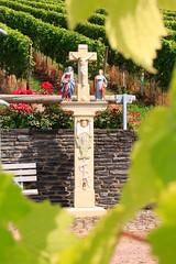 Bernkastel-Kues (RunningRalph) Tags: beeld bernkastelkues deutschland druiven duitsland germany grape statue rheinlandpfalz