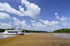 Paraso (Mara Hermes) Tags: rio acar praia guadoce amazonia amazon brasil par marahermes