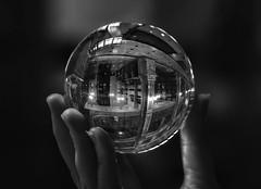 Peabody Library- The World at Your Fingertips (zuni48) Tags: reflections crystalball glassball sphere blackandwhite monochrome peabodylibrary baltimoremaryland