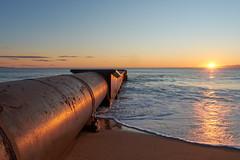 collaroy (Ross Walden) Tags: coastal beach sunrise dawn nsw northernbeaches collaroy