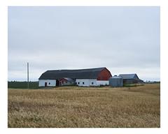lac- -la-croix (Mriol Lehmann) Tags: farm barn rural landscape fields cereals laclacroix qubec canada