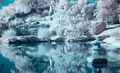 fantasy (newman_ck) Tags: ir infared filter eosm canon japanese garden pond lake bridge trees nature water
