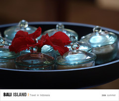 D3_瓶瓶罐罐 (Ache_Hsieh) Tags: travel summer bali digital indonesia island olympus e3 swd 巴里島 zd 蜜月 印尼 1454mm2835 50200mm2835