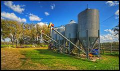 DSC_4842_52_207 (RVDigitalBoy) Tags: ranch cattle florida farmcountry topazfilters promotecontrol nikkor1024mmzoom nikond3100hdr