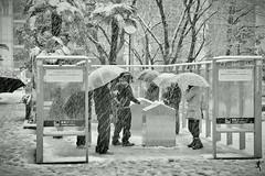 sNOw Smoking (Gulfu) Tags: life winter blackandwhite bw snow rain japan umbrella canon ginza 7d 1750 akihabara tamron snowshower freezingcold smokingzone snowphotography harshweather 10degree gulfuphotography 3degree snowfalltokyo