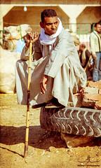 Birquash Camel Market 3 (~ Maany ~) Tags: market egypt camel egyptian camels camelmarket birquash maanysphotography birquashcamelmarketegyptian