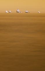 Like ducks (M2273086raw) (Mel Stephens) Tags: uk winter texture geotagged ir coast scotland long exposure sigma olympus best coastal aberdeen le infrared 28 gps february f28 43 omd q1 105mm m43 fourthirds 2013 em5 mirrorless mmf3 micro43 microfourthirds 201302 20130227