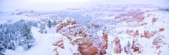Bryce Canyon panorama snowy sunrise point (houstonryan) Tags: park county winter snow art home print landscape photography utah photographer ryan hiking snowy houston canyon hike fresh system national fallen layer bryce redrock sell decor garfield hang freshly snowed houstonryan
