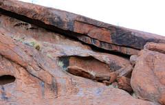 stacked stones Uluru Kata Tjuta National Park red centre Central Australia Northern Territory 2013  _6412 (gervo1865_2 - LJ Gervasoni) Tags: park red rock march desert centre central australia national uluru kata tjuta geology ayers monolith 2013 photographerljgervasoni