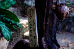 Makulay Lodge, Caalan, El Nido, Palawan (Angkulet) Tags: travel friends elnido palawan caalan makulaylodge