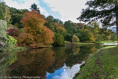K10D-181008-058 (Steve Chasey Photography) Tags: stourhead wiltshire oct08 pentaxk10d smcpentaxda1650mm stourheadgdns