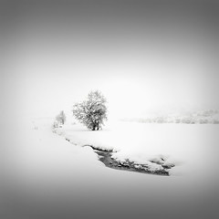 | Catharsis III  the path (Julia-Anna Gospodarou) Tags: trees winter blackandwhite bw white mountain snow nature monochrome square landscape fineart highlights minimal greece negativespace zen dreamy serene highkey 2012 snowscape winterscape catharsis 2013 metsovo blackandwhitefineart nikond7000 blackandwhitefineartphotography tamron18270pzd juliaannagospodarou catharsisiiithepath