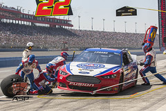 NASCAR 2013:  Sprint Cup Series Auto Club 400 MAR 24 (Walter G. Arce) Tags: ca usa cars ford sports 22 automobile action unitedstatesofamerica shell racing event nascar pr pitstop motorsports fontana pitcrew teamwork tirechange penske stockcars logano overthewall zsports znascar sprintcupseries autoclubspeedway autoclub400 d1303acs