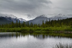 A Drizzling Morning at Vermilion Lakes (trek22 (on the road...)) Tags: morning canada alberta banff vermilionlakes drizzling trek22