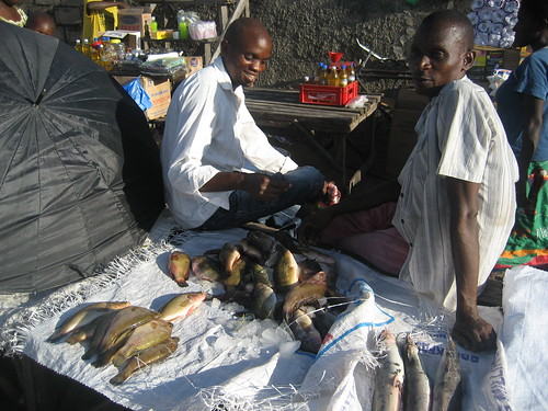 Small dried fish being sold at the market in Mongu, Zambia. Photo by Kate Longley, 2013.