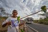Roadside Parrot & Iguana Seller (AdamCohn) Tags: road bus clouds highway parrot bluesky iguana vendor nicaragua roadside sales parrots iguanas garrobo adamcohn wwwadamcohncom