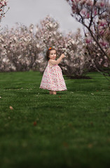Look at the Flowers! (SLewis Photography) Tags: spring blossoms magnolias 17months kiddos april2013 saralewisphotography wwwsaralewisphotographycom deannarosechildresfarmstead