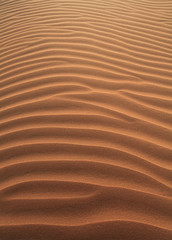 Sand texture (Mansour.F) Tags: trip travel wallpaper sun sunlight color art texture beautiful beauty smile canon wonderful relax outside photography photo nice interesting sand focus closed flickr all desert time you near awesome side dry places hobby arab arabia keep shooting simply riyadh saudiarabia canon1740mmf4lusm ef passions ksa mansour  saudia        canon5dmarkii canonef100mmf28lmacroisusm 100400mmlf4556lisusm canonef100400mmlf4556lisusm
