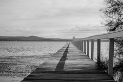 Monochrome Waterscape at Long Jetty (Merrillie) Tags: natural nikon nature australia d5500 nswcentralcoast newsouthwales nsw blackandwhite monochrome centralcoastnsw wharf water photography landscape outdoors waterscape jetty centralcoast longjetty outdoor lake tuggerahlake