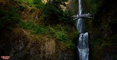Multnomah Falls (MBates Foto) Tags: multnomahfalls water waterfalls nature outdoors oregon scenic tourism stateforestservice stateparks bridalveil columbiarivergorge columbiariver columbiagorgenationalscenicarea unitedstates
