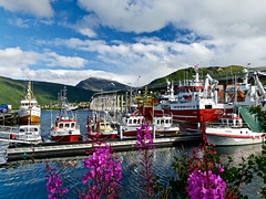 Troms - Porto (di maggio antonio) Tags: norway nature capo nord lofoten sami tromso lumix mtf leica 15mm f17 dg summilux asph landscape micro four thirds