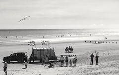 coast: seaside (gregjack!) Tags: uk england stmarysbay beach seaside sand sea people donkey donkeyride flag unionjack bw