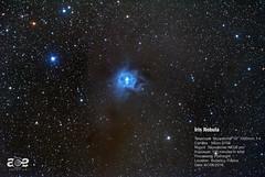 Iris Nebula (NGC 7023) (Ace Shooting) Tags: astrophotography aceshooting sky telescope skywatcher deepsky pixinsight nebula galaxy m101 iris