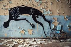 Abandoned Psychiatric Asylum (Urbex Diary) Tags: abandonedpsychiatricasylum abandoned abandonedhospital lostplace lost place decay verlassen verfallen wheelchair ghost travel urbex urban exploration urbanexploration canon eos 6d1635f28