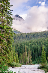 Bow River (Per@vicbcca (Thanks for over 1Mill Views!)) Tags: lakelouise campground alberta canada landscape river bowriver nationalpark