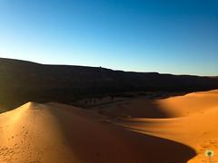 Les dunes du Grand Erg Occidental (Ath Salem) Tags: algrie bchar sahara taghit dsert desert dunes sable coucher de soleil dcouverte tourisme grand erg occidental ciel calme dtente