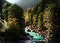 River Enss near Hieflau (Bernd Thaller) Tags: johnsbach steiermark österreich at enss ensstal river gorge gesäuse nationalpark outdoor trees nature landscape austria