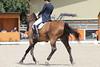 IMG_8274 (dreiwn) Tags: dressage dressur dressuur pferd reitturnier turnierreiten pferdesport horse horseback horseriding equestrian reitverein dressurprüfung kandare doublebridle reiten pferde reitplatz ridingarena