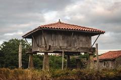 (Irene Ziel Photography) Tags: horreo construccion construction typical asturian asturias gijon airelibre edificio cielo costa espaa canon canonflickraward tamron pasion passion