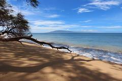 Ka'anapali Beach (russ david) Tags: kaanapali beach hi maui hawaii september 2016 ocean lanai island pacific