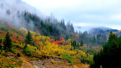 2016-09-23 Big Cottonwood Canyon 3506 (rangerbatt) Tags: fall autumn fallcolors fallfoliage autumnfoliage autumnclolor mistymountains wasatch wasatchmountains utah utahlandscape bigcottonwoodcanyon autumnlandscape foggy d5300 nikond5300