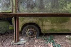 Volvo.... (Cyber House) Tags: volvoforlifecyberhousecarabandoneddecaymoss wheel urbexnikonexploringbelgiumgaragecargraveyard