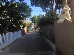 Bear Attack! (mockstar) Tags: losangeles davidpoe desanimaux