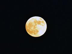 "The moon (Vidar ""the Viking"" Ringstad, Norway) Tags: moon black yellow norway canon eos norge spring europa nightshot norwegen 7d nes scandinavia gul mne vr vren svart nightpic kveldsbilde oppaker mrkebilde oppakermoen"