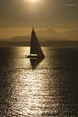 Sunset sailing (Getting Better Shots) Tags: sunset water bay boat sailing pugetsound