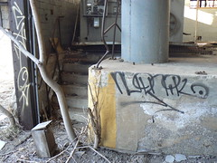 gator nudnik (httpill) Tags: streetart chicago art graffiti gator tag graf gary nudnik