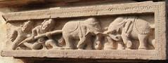 Khajuraho (nicnac1000) Tags: khajuraho elephant sculpture madhyapradesh india hindu temple lakshmana 10century 10thcenturyce unesco worldheritagesite 10thcenturyad india2013 mp indian chandela 10thcentury 950ad yashovarman northindian vishnu vaikunthavishnu chattarpur chhatarpur bundelkhand